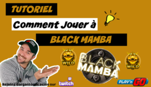 MINIATURE TUTORIEL BLACK MAMBA